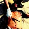 Homem de 20 anos de idade é encontrado morto com facada no peito no Ulisses Guimarães, um suspeito é preso pela policia
