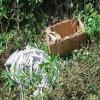 Quase 200 bananas de dinamite e outros explosivos são apreendidos em fazenda