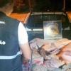 PRF apreende carne suína na BR-367 e faz alerta ao consumidor